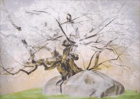 中島千波 「石割桜」